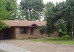 Casa en Remate en Smithville 37166 FRAIZER ST - Identificador: 1708437747