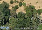 Casa en Remate en Morgan Hill 95037 OAK GLEN AVE - Identificador: 1876063530