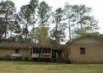 Casa en Remate en Douglas 31533 INDIAN TRL - Identificador: 3202540930