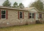 Casa en Remate en Norman Park 31771 E GATE DR - Identificador: 3489261922