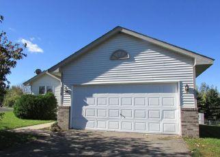 Casa en Remate en Montrose 55363 MINDY LN - Identificador: 2757723578