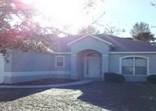Casa en Remate en Minneola 34715 WILLOW RUN ST - Identificador: 2870688910