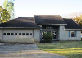 Casa en Remate en Brunswick 31525 EMANUEL FARM RD - Identificador: 3606501863