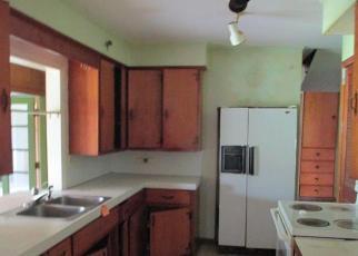 Casa en Remate en Willis 48191 TALLADAY RD - Identificador: 3966247115