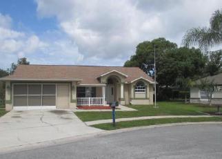 Casa en Remate en Hudson 34669 SMOKEY DR - Identificador: 3970477968