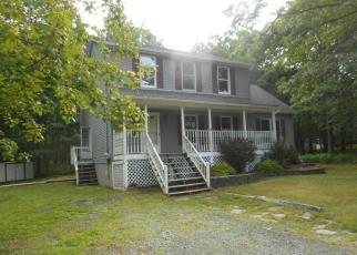 Casa en Remate en Dingmans Ferry 18328 LAKE DR - Identificador: 4010484242