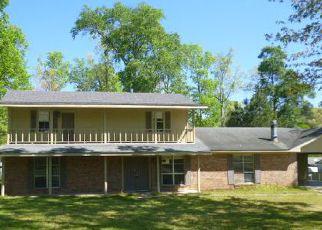 Casa en Remate en Jasper 75951 CHESTNUT CIR - Identificador: 4042655633