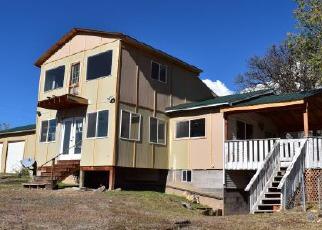 Casa en Remate en Cedaredge 81413 WARD CREEK RD - Identificador: 4066398192