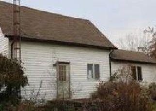 Casa en Remate en Snover 48472 WHEELER RD - Identificador: 4073947561