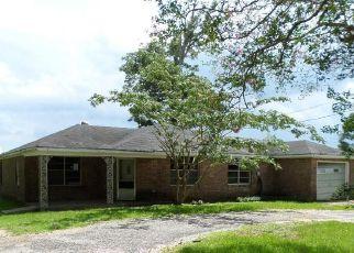 Casa en Remate en Wilmer 36587 DRISKELL LOOP RD S - Identificador: 4083826495