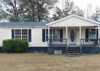 Casa en Remate en Douglas 31533 FLEETWOOD CIR - Identificador: 4097686626