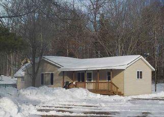 Casa en Remate en Indian River 49749 E MULLETT LAKE RD - Identificador: 4115662391