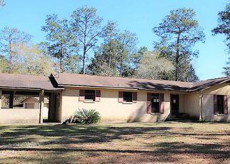 Casa en Remate en Marianna 32448 THOMASVILLE LN - Identificador: 4121295617