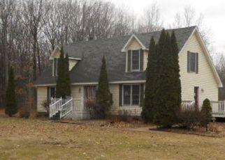 Casa en Remate en Birch Run 48415 TOWNLINE RD - Identificador: 4123928718
