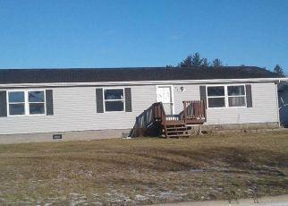 Casa en Remate en Wrenshall 55797 ERICKSON LN - Identificador: 4124142440