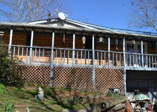 Casa en Remate en Ellijay 30540 ONEAL LN - Identificador: 4127454852