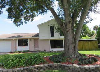 Casa en Remate en Brandon 33510 MCINTOSH CIR - Identificador: 4133254942
