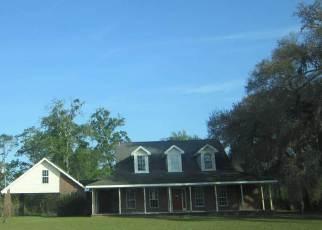 Casa en Remate en Greenville 32331 BEN EAKINS RD - Identificador: 4137534821