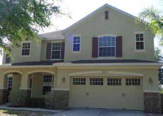 Casa en Remate en Mount Dora 32757 GIDRAN TER - Identificador: 4139961184