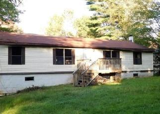 Casa en Remate en Eldred 12732 PROCTOR RD - Identificador: 4140194633
