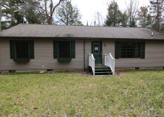 Casa en Remate en Hessel 49745 N RIVERVIEW RD - Identificador: 4142739251