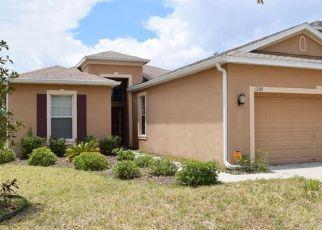 Casa en Remate en Lithia 33547 CHELSEA DOWNS CIR - Identificador: 4143014300