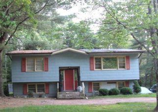 Casa en Remate en South Fallsburg 12779 PINEWOOD ESTATES RD - Identificador: 4157250207