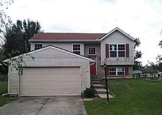 Casa en Remate en Amelia 45102 SANDPIPER CT - Identificador: 4160572690