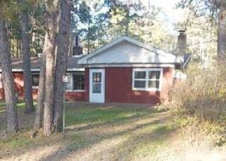 Casa en Remate en Britt 55710 N FOREST LN - Identificador: 4160819250