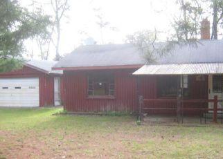 Casa en Remate en West Branch 48661 OLESKIE TRL - Identificador: 4160822772