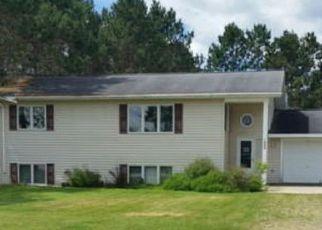 Casa en Remate en Bagley 56621 PATRICIA LN NW - Identificador: 4197707173