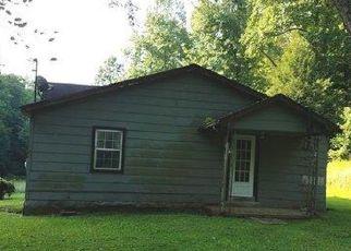 Casa en Remate en Sitka 41255 BROWN BR - Identificador: 4199294846
