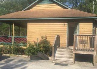 Casa en Remate en Currie 28435 RIVERLAND DR - Identificador: 4199573390