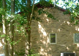 Casa en Remate en Chapin 29036 NEWBERG RD - Identificador: 4203568143