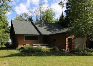 Casa en Remate en Brimley 49715 W LAKE STREET LOOP - Identificador: 4206030436