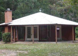 Casa en Remate en Greenville 30222 BOWES CHURCH RD - Identificador: 4208609224