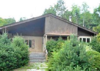 Casa en Remate en Deposit 13754 MARSH POND RD - Identificador: 4208840482