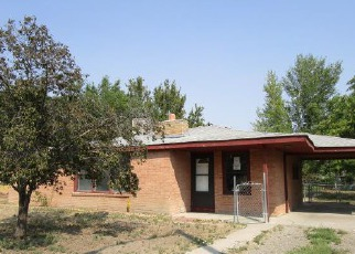 Casa en Remate en Grand Junction 81501 SPARN ST - Identificador: 4209040187