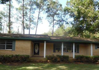 Casa en Remate en Douglas 31533 HIGHWAY 32 W - Identificador: 4211311979