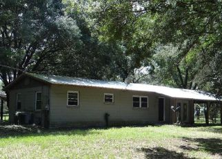 Casa en Remate en Dover 33527 FIETZWAY RD - Identificador: 4211356196