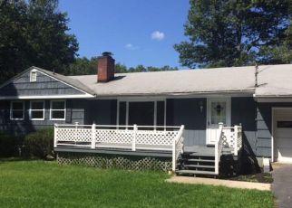 Casa en Remate en Pine Plains 12567 BOWMAN RD - Identificador: 4211612868