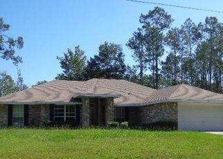 Casa en Remate en Palm Coast 32164 RICKENBACKER DR - Identificador: 4215282199