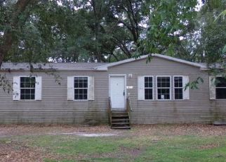 Casa en Remate en Ocklawaha 32179 SE 65TH STREET RD - Identificador: 4218021742