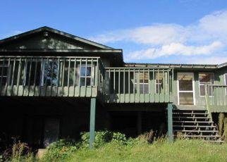 Casa en Remate en Spicer 56288 BRECKE CIR - Identificador: 4219417557