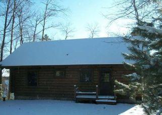 Casa en Remate en Eagle River 54521 NELSON LAKE RD - Identificador: 4225091959