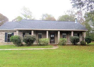 Casa en Remate en Perkinston 39573 CONNER DR - Identificador: 4228610632