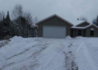 Casa en Remate en Lac Du Flambeau 54538 KOERNET CREEK LN - Identificador: 4235169286