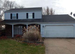 Casa en Remate en Castalia 44824 PARKER RD - Identificador: 4235442587