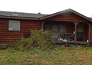 Casa en Remate en Holton 49425 BRUNSWICK RD - Identificador: 4235685218