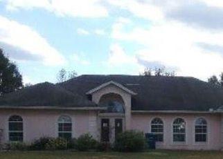 Casa en Remate en Astor 32102 RED COLT CT - Identificador: 4235901586